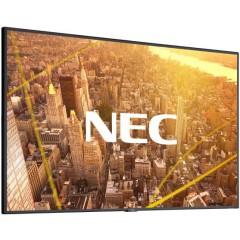 """Monitor NEC C431 43"""""""